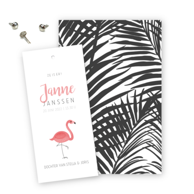 geboortekaartjes-flamingo-label-splitpen-janne